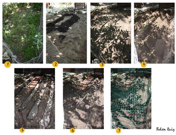 C mo preparar el huerto viviendo entre plantas for Preparar el huerto en invierno