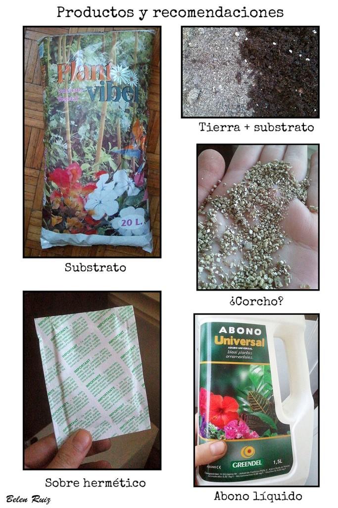 productos y recomendaciones