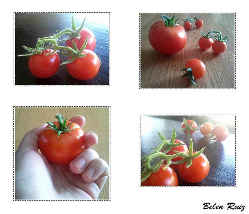 tomates cherry y raf