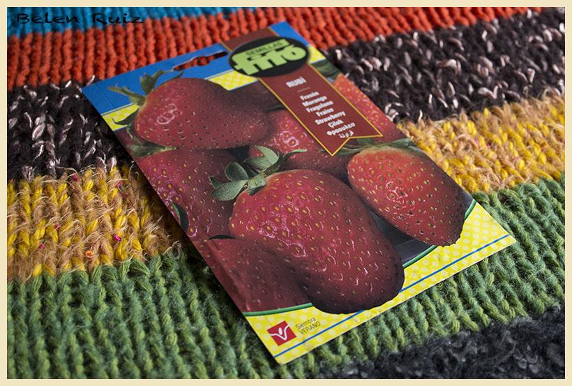 semillas fresas