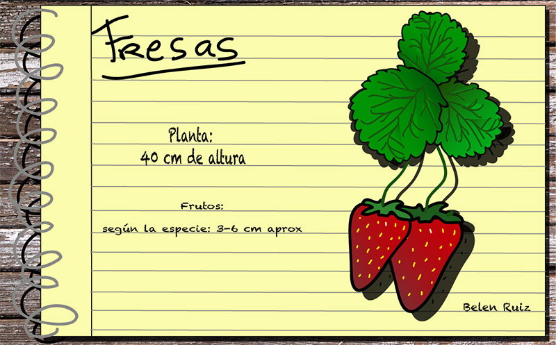 fresas copia